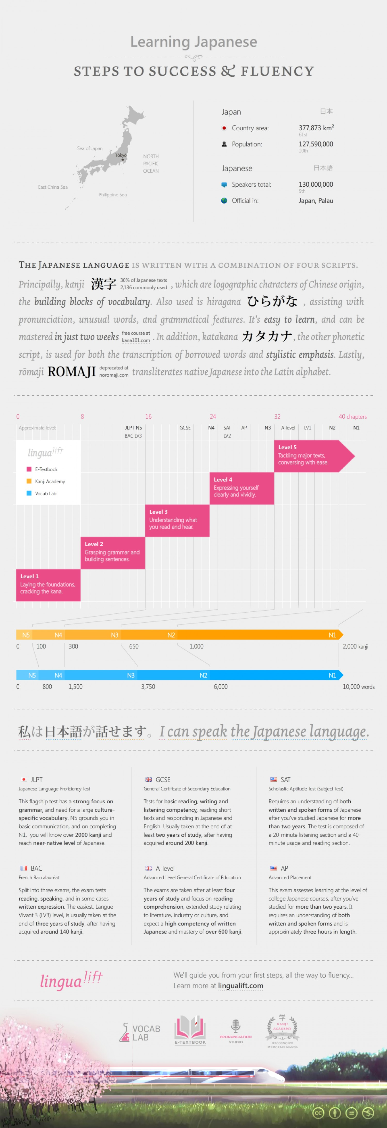 Learning Japanese: Steps to Success & Fluency