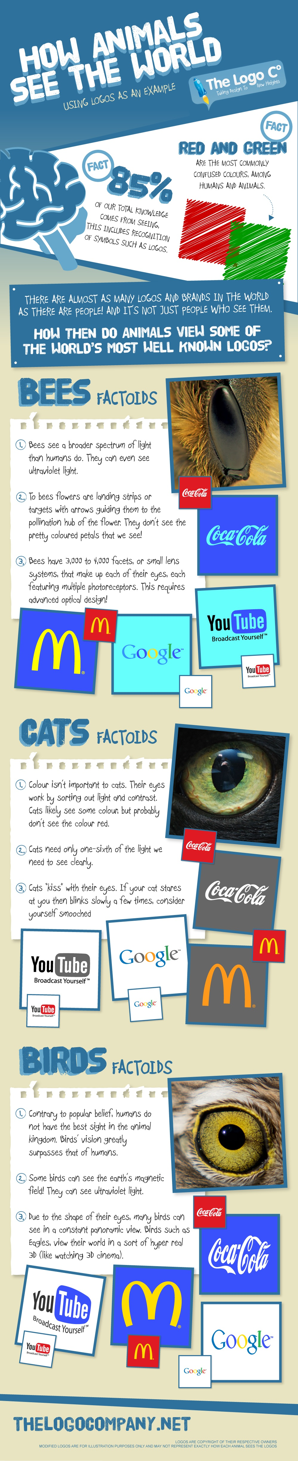 How Animals See the World Using Logos as an Example
