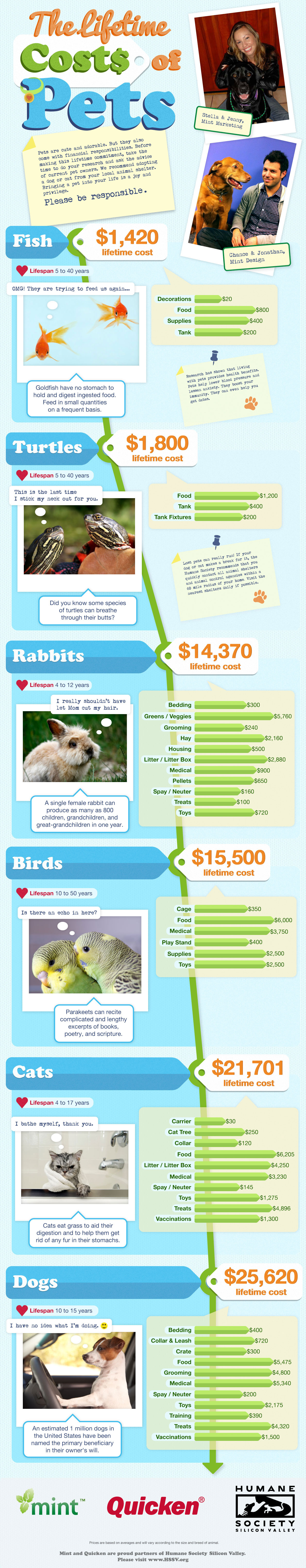 The Lifetime Costs of Pets