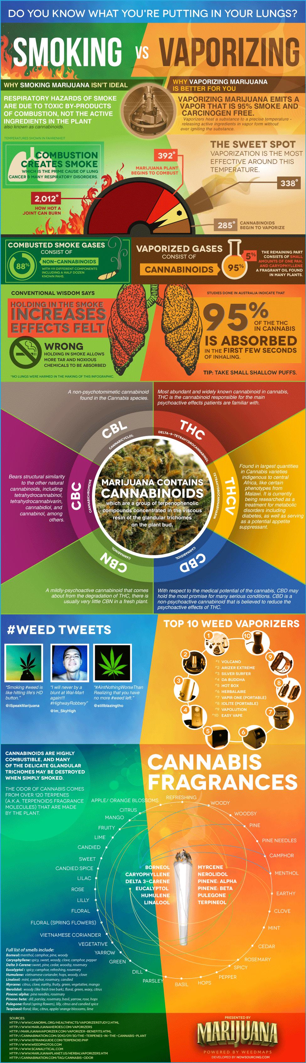 Marijuana: Smoking vs Vaporizing