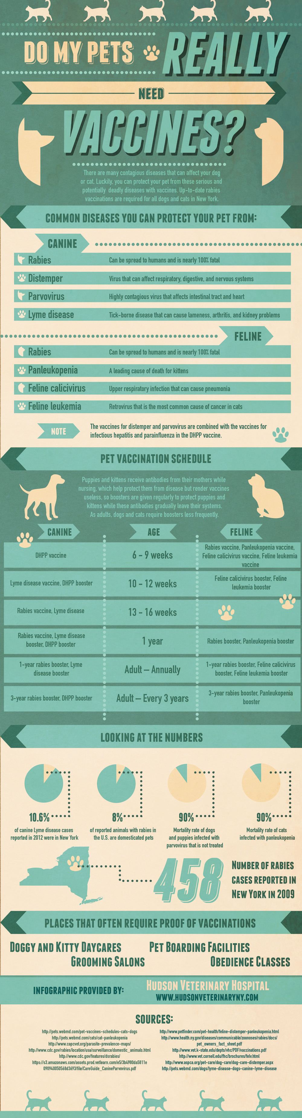 Do My Pets Really Need Vaccinations?