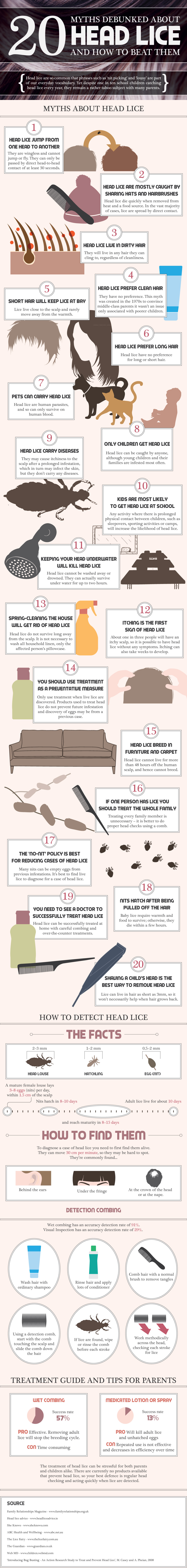 20 Facts About Headlice