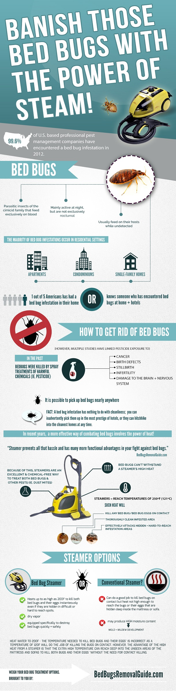 Banish Those Bed Bugs With The Power of Steam