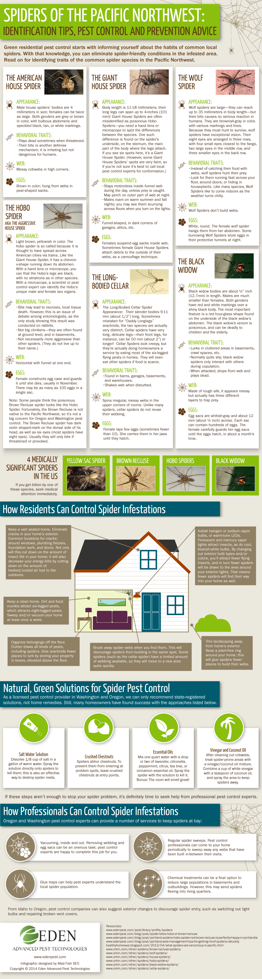 Spiders of the Pacific Northwest