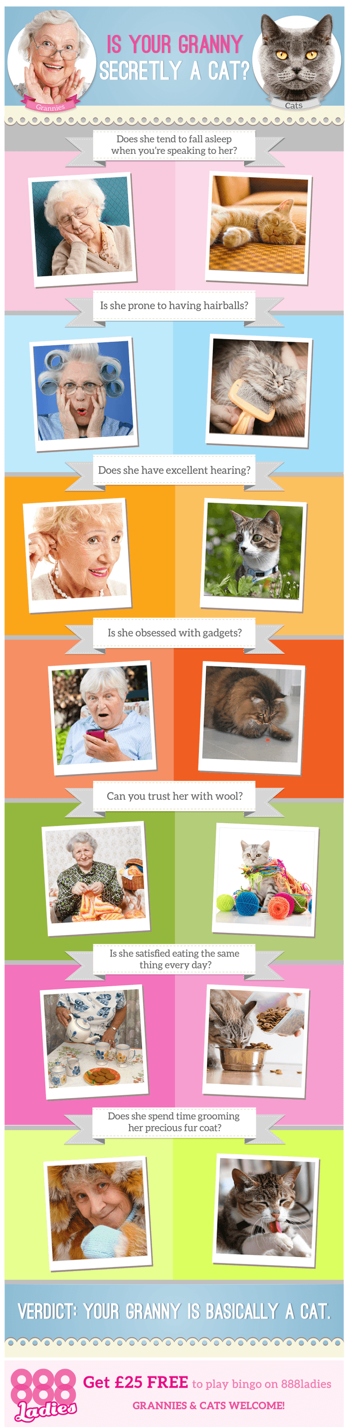 Is Your Granny Secretly a Cat?