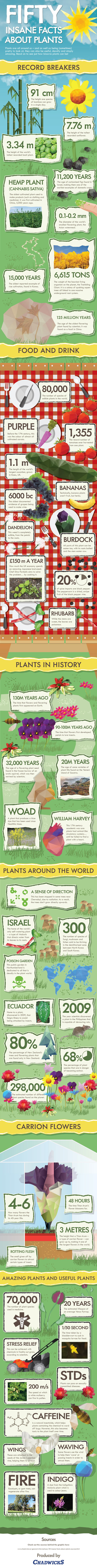 50 Insane Facts About Plants