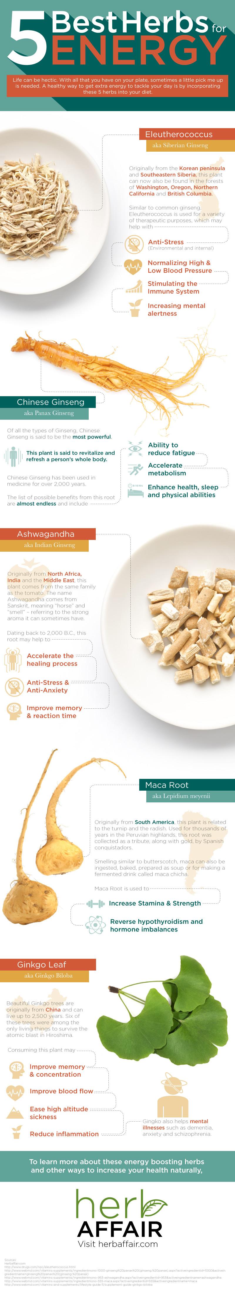 5 Best Herbs for Energy
