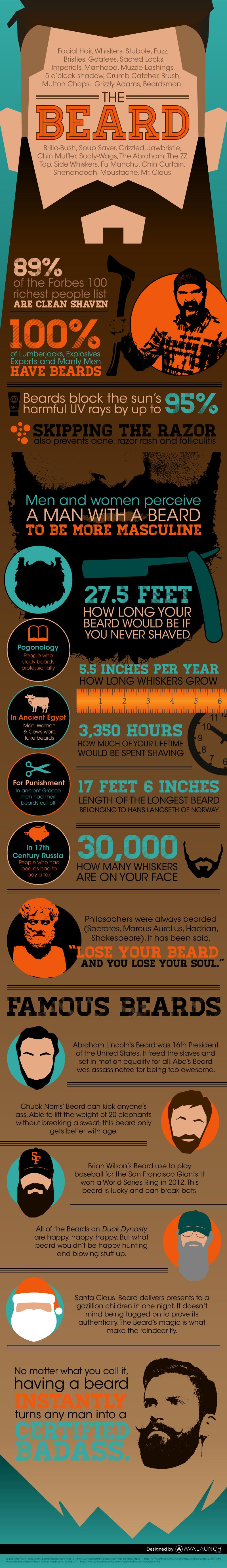 The Beard Infographic