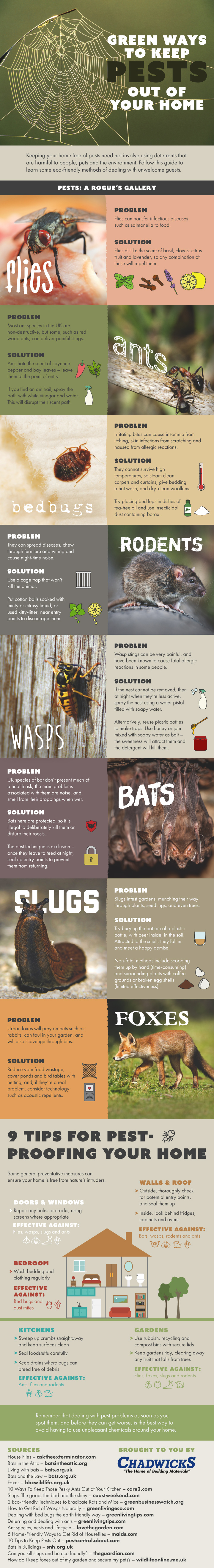Green Ways to Keep Pests From Your Home