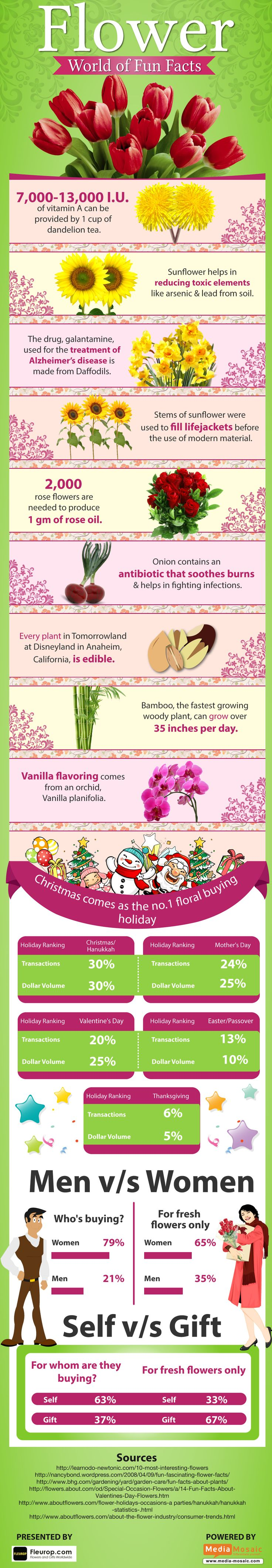 Flower World of Fun Facts