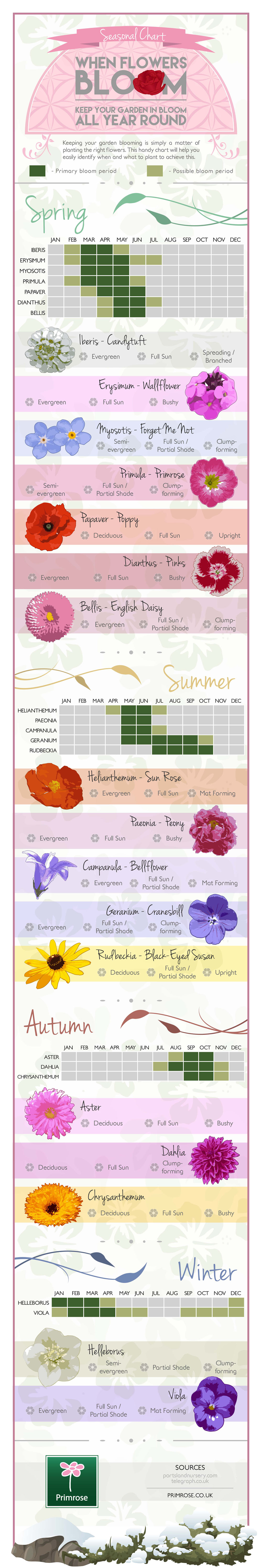 The Definitive Guide For Colourful Gardens All Year Round