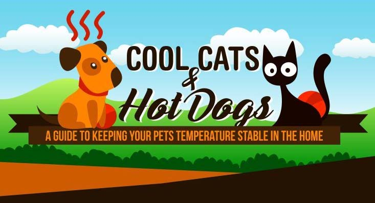 Keeping Ambient Temperatures For Healthy Pets