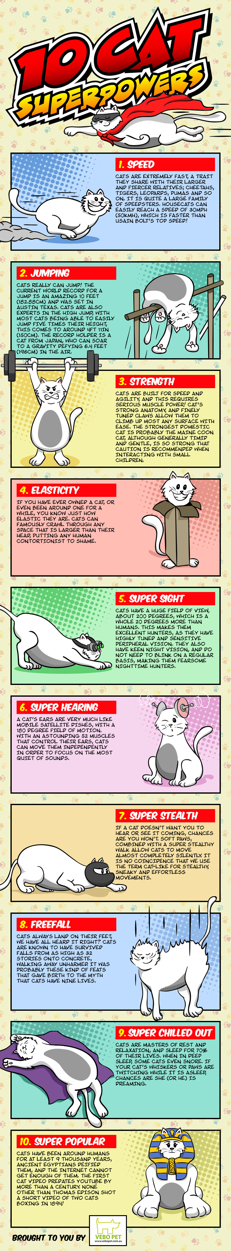 10 Cat Superpowers