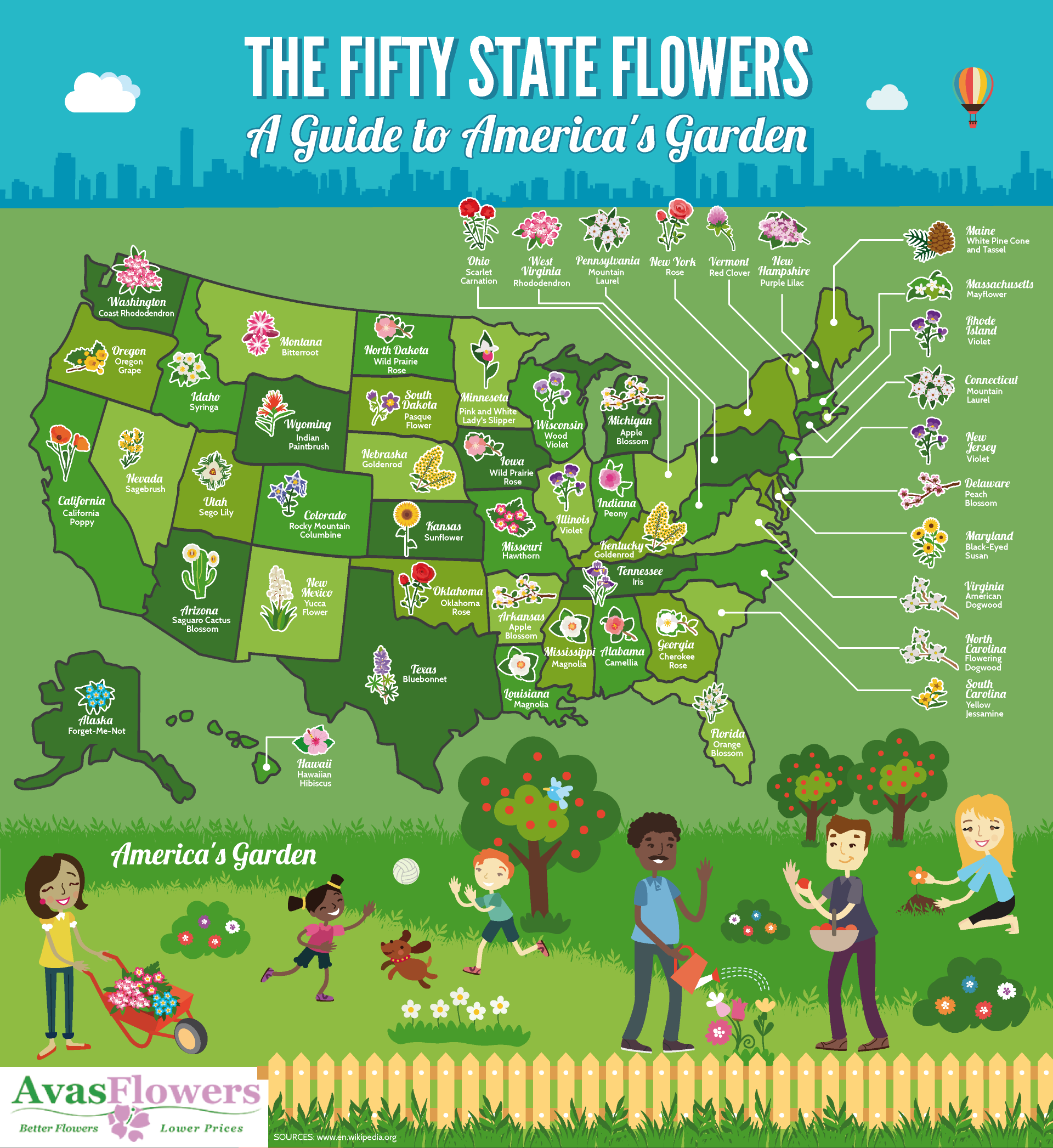 The Fifty State Flowers: A Guide to America's Garden