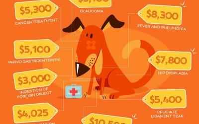 Pet Insurance 2016 Statistics