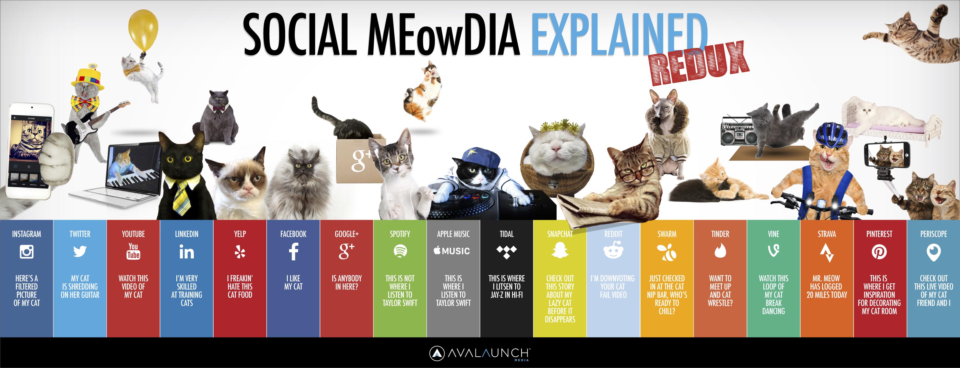 Social Meowdia Explained Redux