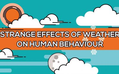 The Strange Effects of Weather on Human Behavior