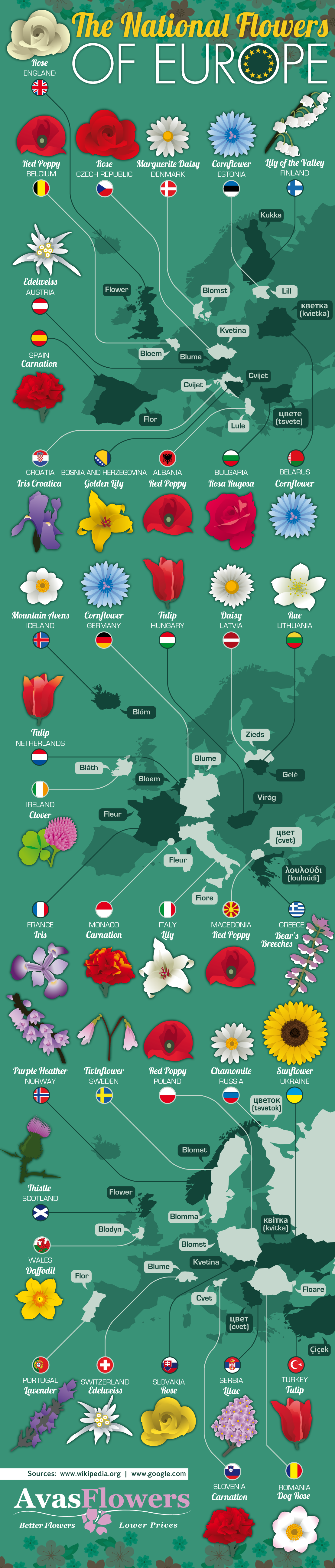 Flowers That Represent European Nations [Infographic]