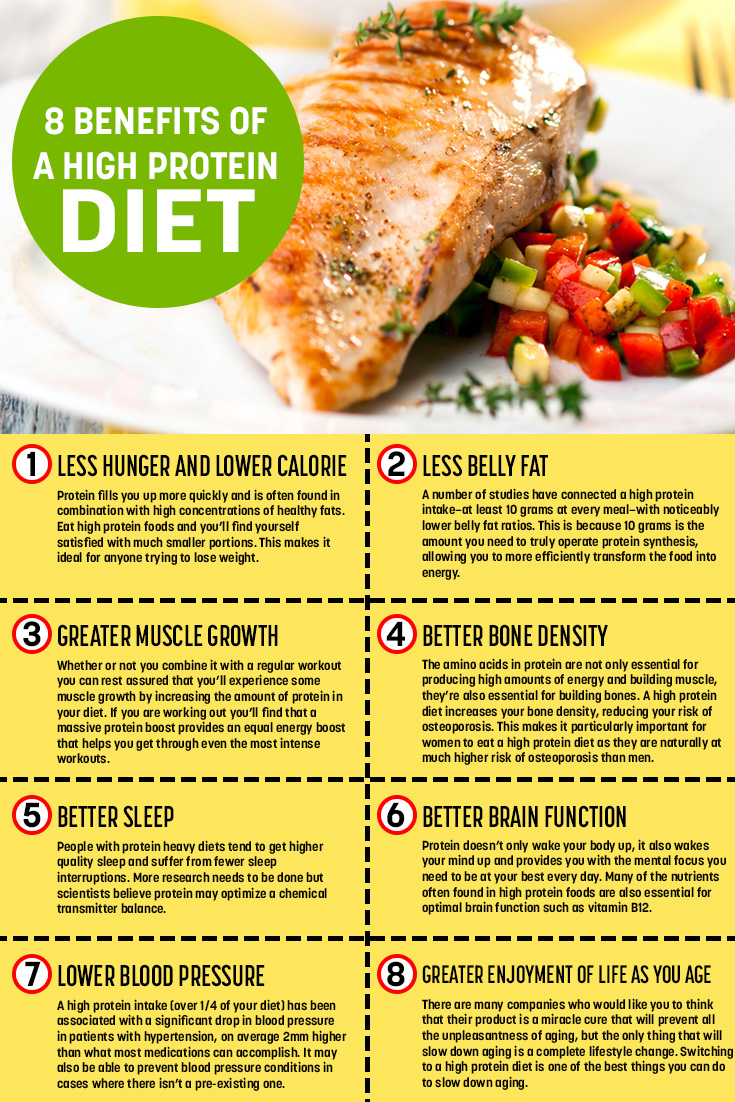Spotlight on... high-protein diets