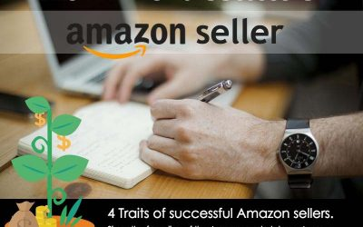 The DNA of a Successful Amazon Seller