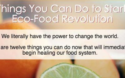 12 Things to Start an Eco-Food Revolution