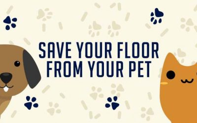 Save Your Floor From Your Pets