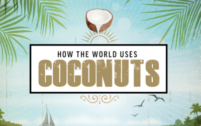 How the World Uses Coconuts