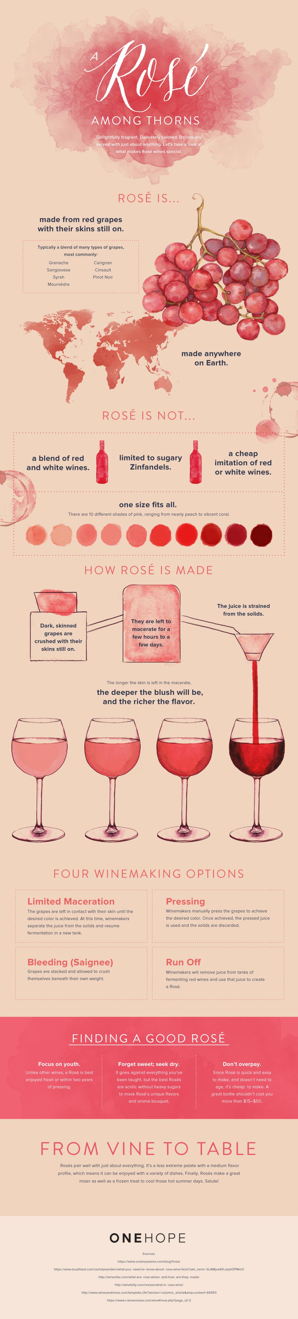 Rosé 101: Everything You Need To Know About This Delicious Wine