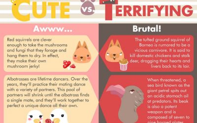 Cute vs Terrifying Facts About Animals