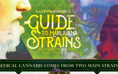 A Connoisseur's Guide To Marijuana Strains