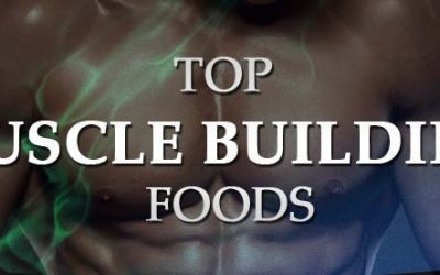 Top Muscle Building Foods