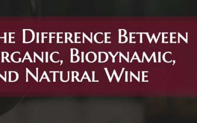 The Difference Between Organic, Biodynamic, and Natural Wine