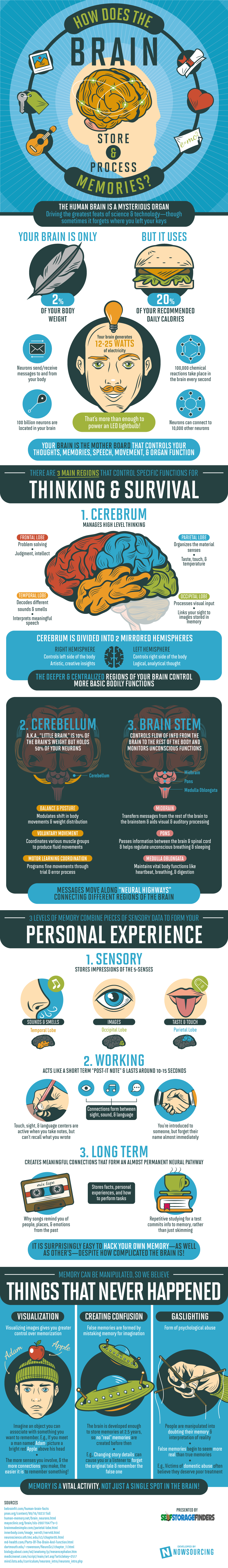 How Does The Brain Store And Process Memories?