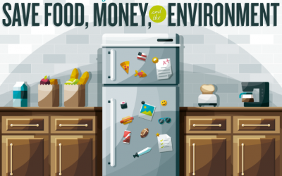 Savvy Food Storage: Save Food, Money, And The Environment