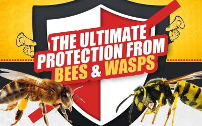 Ultimate Protection from Bees and Wasps