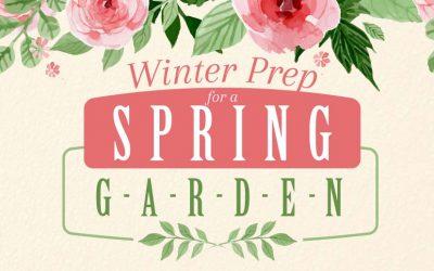 Winter Prep for a Spring Garden
