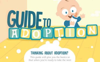 Guide to Adoption