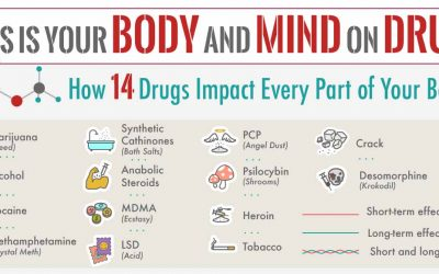 This is Your Body and Mind on Drugs