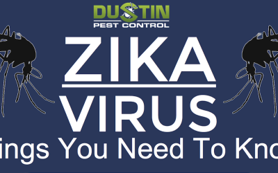 Zika Virus: Things You Need to Know
