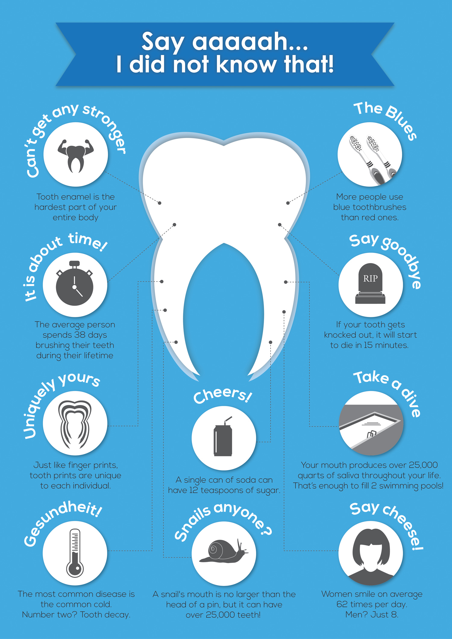 10 Cool Facts About Your Teeth