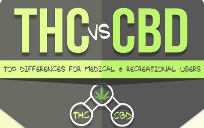 THC vs. CBD: Top Differences for Medical and Recreational Users