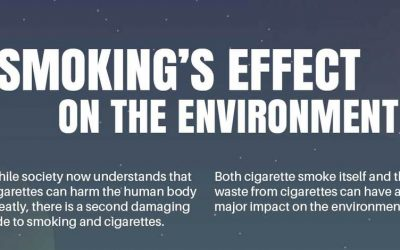 Smoking's Effect On The Environment