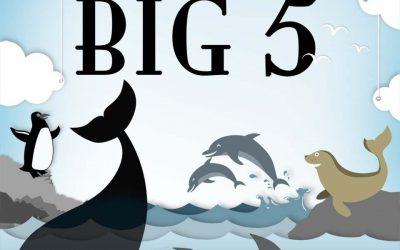 Introducing the Marine Big 5
