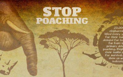 Stop Animal Poaching
