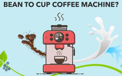 Why Choose a Fully Automatic Bean to Cup Coffee Machine?