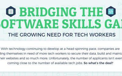 Bridging the Software Skills Gap