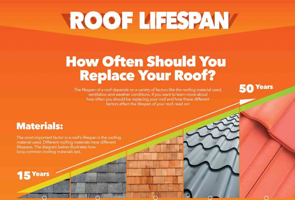 How Often Should You Replace Your Roof Infographic