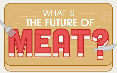 What is the Future of Meat?