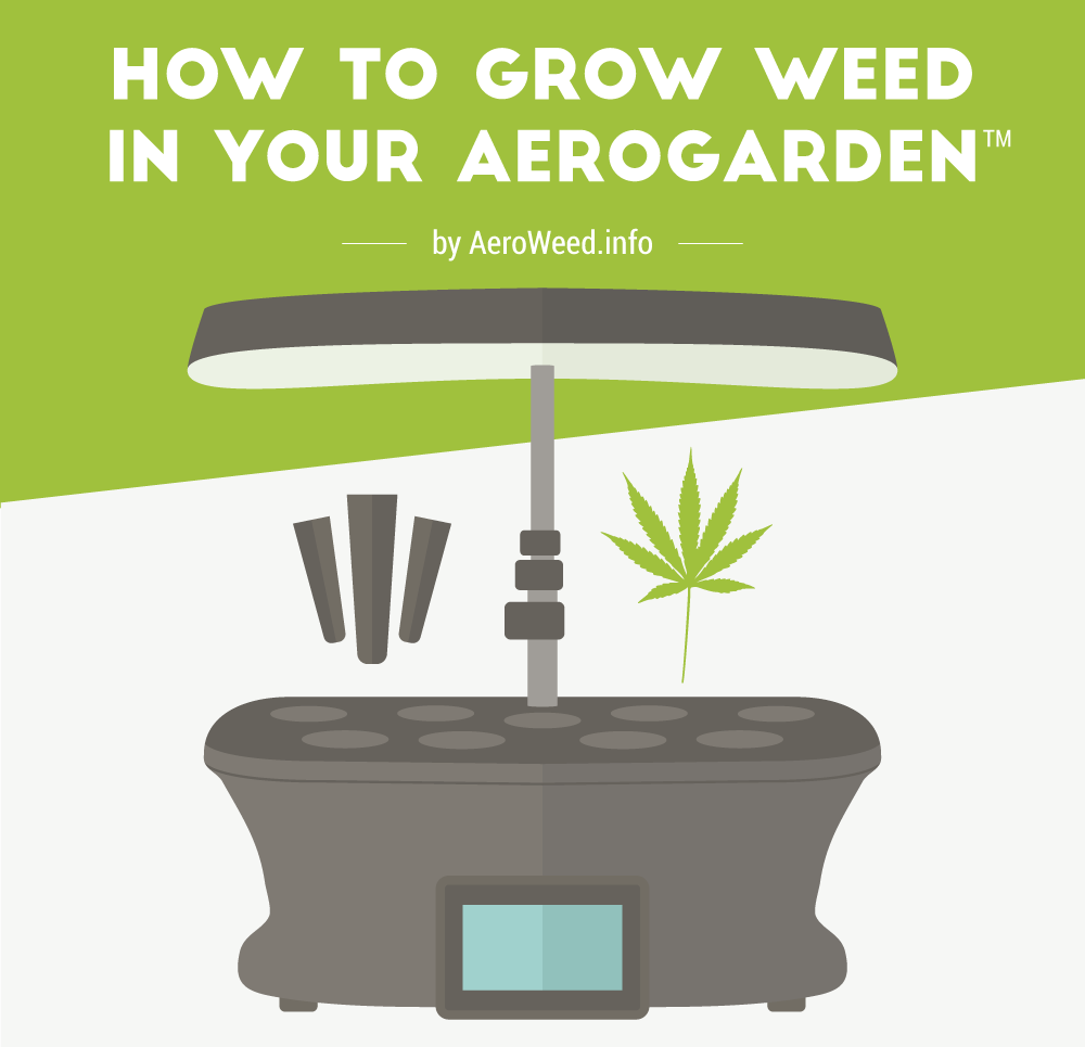 how to grow weed in your room