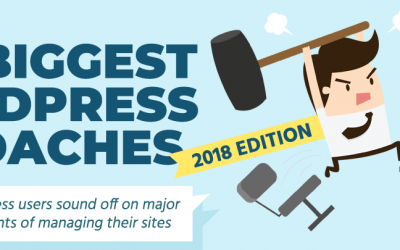 The Biggest WordPress Headaches of 2018